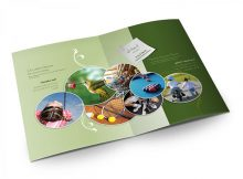 Các bước để thiết kế brochure hiệu quả